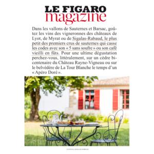 Oenotourisme de printemps à Sigalas-Rabaud